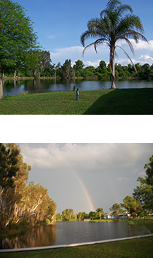 scenery_at_crystal_lake_rv_park_florida